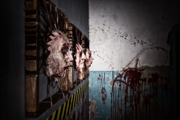 Side view of the ghastly skins from human heads stuck in square