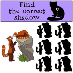 Educational game: Find the correct shadow. Two little cute panda
