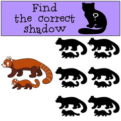 Educational game: Find the correct shadow. Red panda with baby.