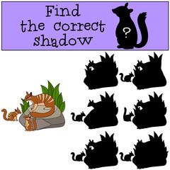 Educational game: Find the correct shadow. Mother numbat with ba