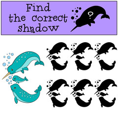 Educational game: Find the correct shadow. Narwhal family swims.