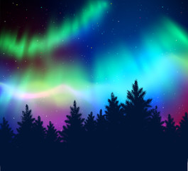 Winter background with northern lights