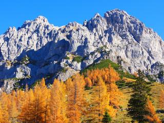 Herbststimmung im Gebirge