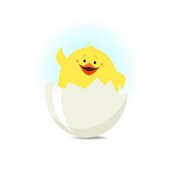 Newborn chick sitting in the shell. Vector illustration