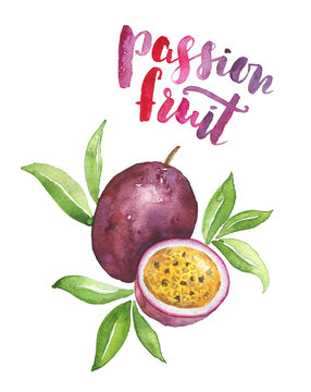 Watercolor passion fruit illustration isolated on white. Nice drawing of a tropical fruit with hand-lettered name of it.