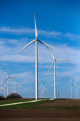 Green meadow with wind turbines generating electricity. Picture of many wind turbines on field. Green energy concept.