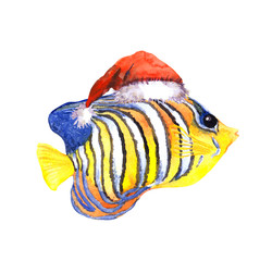 Christmas exotic tropical fish, red santa's hat. Water colour