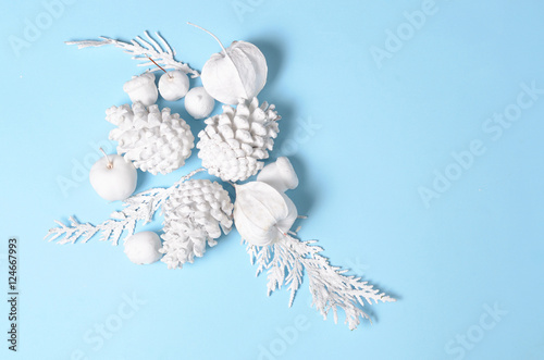 hipster conceptual minimalist christmas and new year background pine cones and branches physalis flowers