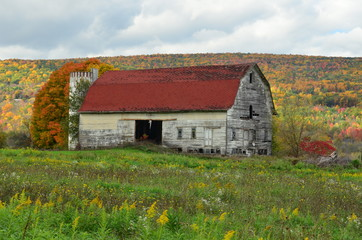 Beautiful old weathered barn on an upstate New York hillside with fall foliage backdrop