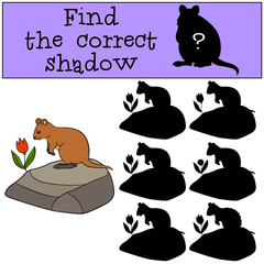 Educational game: Find the correct shadow. Little cute quokka.