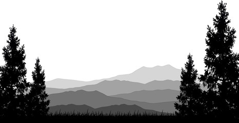 mountains and pine forest silhouette landscape background