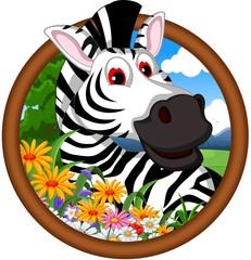 zebra cartoon in frame