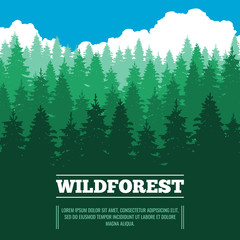 Wild landscape with fir trees coniferous forest vector illustration