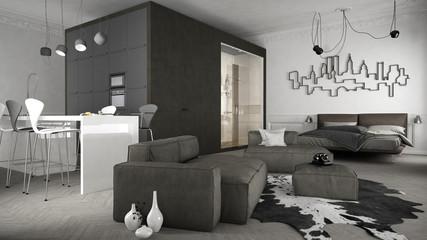 One-room apartment, interior design