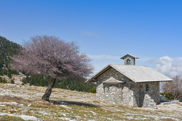 Winter landscape with a small chapel a tree and blue sky  on mountain Helmos near Kalavryta town in Greece