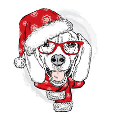 Funny Dog in Christmas hat. Vector illustration. Christmas and New Year.