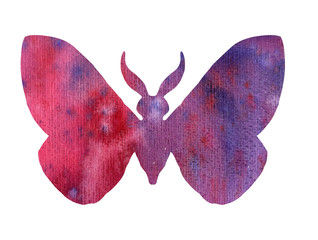 color watercolor silhouette of butterfly