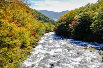 秋の龍頭滝(上)