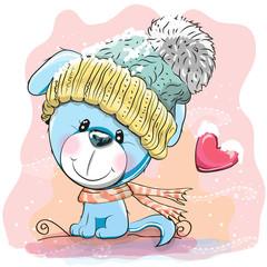Cute Puppy in a knitted cap