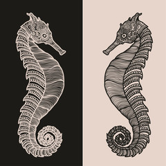 Zentangle stylized black and beige Sea Horse. Hand Drawn vector illustration isolated. Sketch ocean collection.