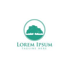 Oak tree logo design