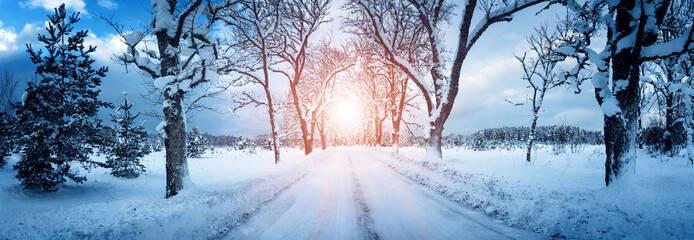 winter panorama on the road through snowy alley