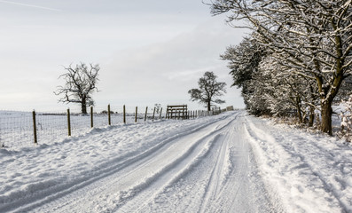 Snowy country lane in Cumbria