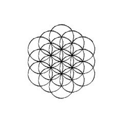 Flower of life vector.Line sketch icon.