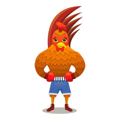 Rooster boxer in gloves