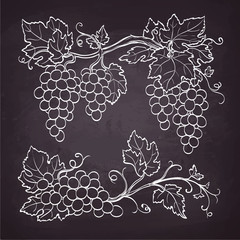 Grape branches drawn on chalkboard..