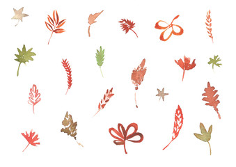 Set of different leaves, hand drawn watercolor illustration, floral