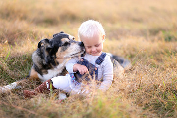 German Shepherd Miz Breed Dog Kissing Baby Girl on Cheek