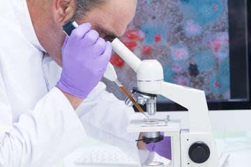 Laborant im Labor macht Untersuchungen