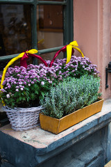 Pots and basket with autumn flowers on windowsill outdoors.