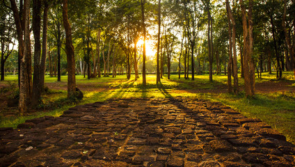 summer sunset and red stone floor in the forest , Thailand