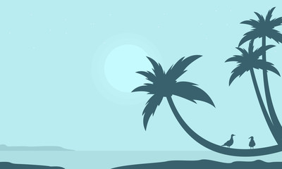 Palm on the beach scenery silhouettes