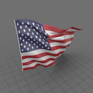 Flag USA 2