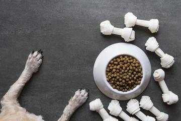 dog food and dog paw on black background
