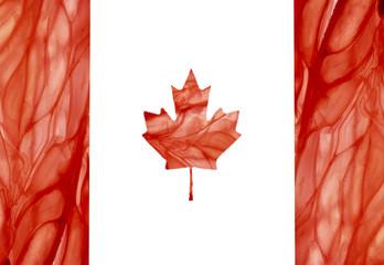 флаг канады вырезан из грейпфрута яркий красный и сочный
