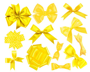Set of yellow festive bows on white background