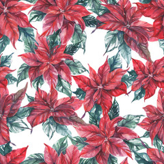 Hand-drawn watercolor seamless holiday pattern with red poinsettia flowers. Repeated decorative background. Christmas colorful blossom, red winter flowers