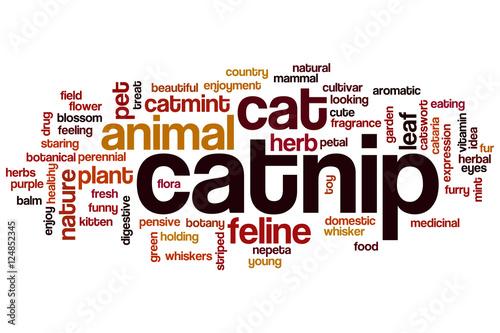 catnip word cloud stockfotos und lizenzfreie bilder auf bild 124852345. Black Bedroom Furniture Sets. Home Design Ideas