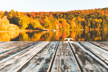Empty wooden dock on the lake with trees on background