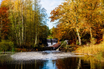 Woodland landscape with waterfall and fish ladder in fall. The river Braknean in southern Sweden.