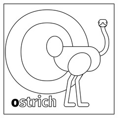 Coloring page or card for kids with English animals zoo alphabet. Ostrich, letter O vector illustration