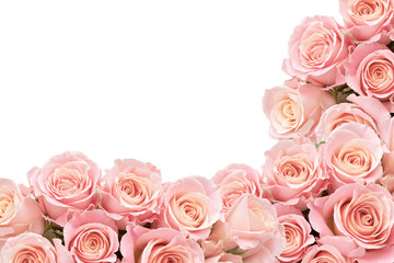 Border of Roses with space for text