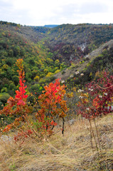 Colors of the autumn, walk in the park. Ancient monastery. Village Saharna.