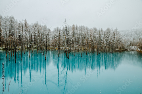 Biei Blue Pond One Of The Most Beautiful Pond In The