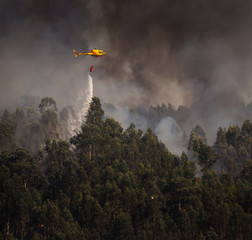 Portuguese Civil Protection Firefighter Helicopter Dropping Water on a Fire 5