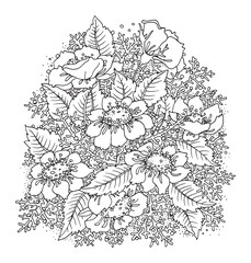Hand drawn flowers on white background
